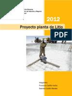249919367 Proyecto de Litio