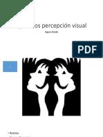 Ejercicios Percepción Visual