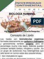 Uc Clase - Lipidos