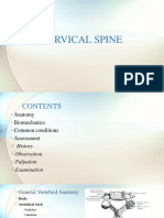 0_cervical Spine Assessment-1