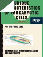 Unique Characteristics of Prokaryotic Cells