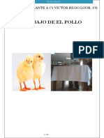 Trabajo de El Pollo