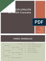 Pares Craneales Exploracion