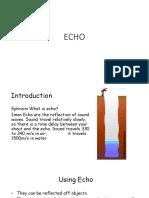 Echo (1).pptx