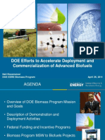 01_Rossmeisel_Biomass_Overview_(v2)_4-25-11