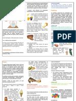 326846143-CLASIFICACION-DE-LOS-ALIMENTOS-pdf.pdf