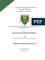 BIOZYME TF GERMINACIÓN TESIS.pdf