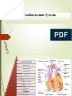 Health Assessment Chapter 10 Assessment of Cardiovascular System [Autosaved]