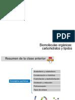 Biomoléculas orgánicas carbohidratos y lípidos.ppt