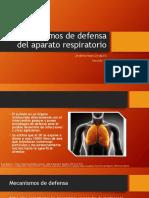 323795701-3-MECANISMOS-DE-DEFENSA-DEL-APARATO-RESPIRATORIO-JIMENEZ-RAZO-LINDA-ELI-pptx.pptx