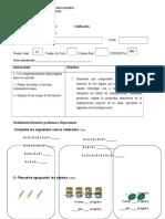 Evaluacion Multiplicacion Tercero Basico