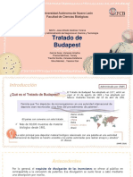 Budapesttreaty-final.pdf
