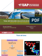 2. Metabolismo Ciclos Biogeoquímico-1 (1)