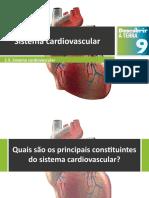 Dt9 Sistema Cardiovascular
