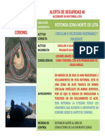 Alerta N° 46 Rotonda Lota_Otras Zonas de Riesgo