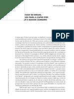 As Ciências Sociais No Brasil