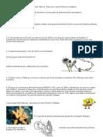 Poriferos e Cnidarios