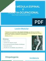 Lesión médula espinal