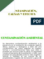 CONTAMINACION AMBIENTAL (2)