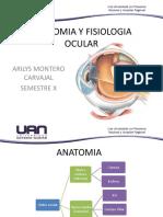 Anatomía y fisiología Ocular
