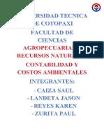informae costos ambientales.docx