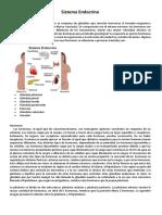 Sistema Endocrino en la psicologia.docx