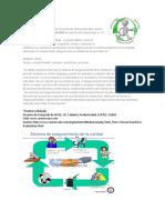 aseguramiento de la calida.pdf