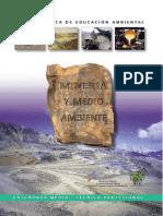 9. Mineria y Medio Ambiente - MonitoreoAmbiental (1).doc
