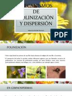 Mecanismos de Polinización y Dispersión