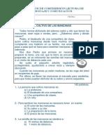Evaluación de Comprensión Lectora de Lenguaje y Comunicación