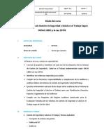 Auditor del Sistema de Gestión de Seguridad y Salud en el Trabajo.pdf