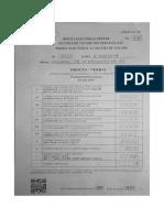 Ungheni - Procesul Verbal privind constatarea rezultatului votării la alegerile pentru Parlamentul European