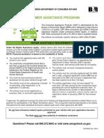 RA_Requirements.pdf