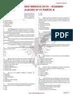 RM 19 - Examen Simulacro 15 A