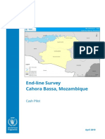 Cahora Bassa Endline Survey Report