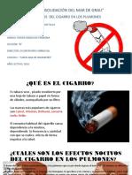 EFECTOS NOCIVOS DEL CIGARRO EN LOS PULMONES....-2.pptx