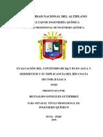 Tesis Evaluación Del Contenido de Hg y Pb Reynaldo 1-4