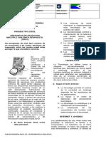 PRUEBA TIPO ICFES 2019.docx