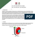 Practica Curva Característica de La Bomba CFD