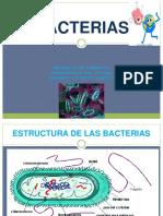 Bacterias Biologia 2 Clase 2016