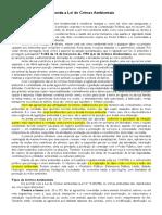 TEXTO-Entenda a Lei de Crimes Ambientais.docx