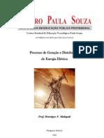 Apostila Prof. Henrique Malaguti