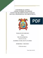 Monografia Sobre Pelvis Estrecha Uancv Ultimo