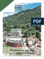 Inducción y políticas SST.pdf