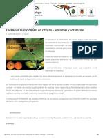 Carencias Nutricionales en Cítricos – Síntomas y Corrección