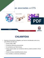 Bacterias ETS (C13)