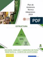 Plan de Asistencia Tecnica Adopciones 2019