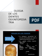 Histologia de Los Dientes Odontopediatria