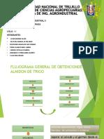 Exposicion de Tecnologia II (Almidon de Trigo)