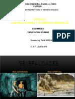 Cap. 01.- Laboreo de Minas y Yacimientos Minerales